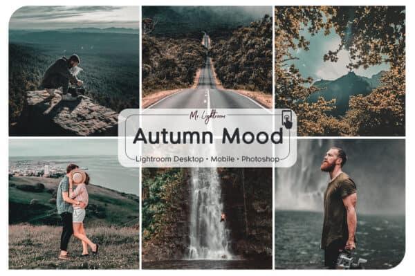 Autumn Mood Lightroom Desktop and Mobile Presets