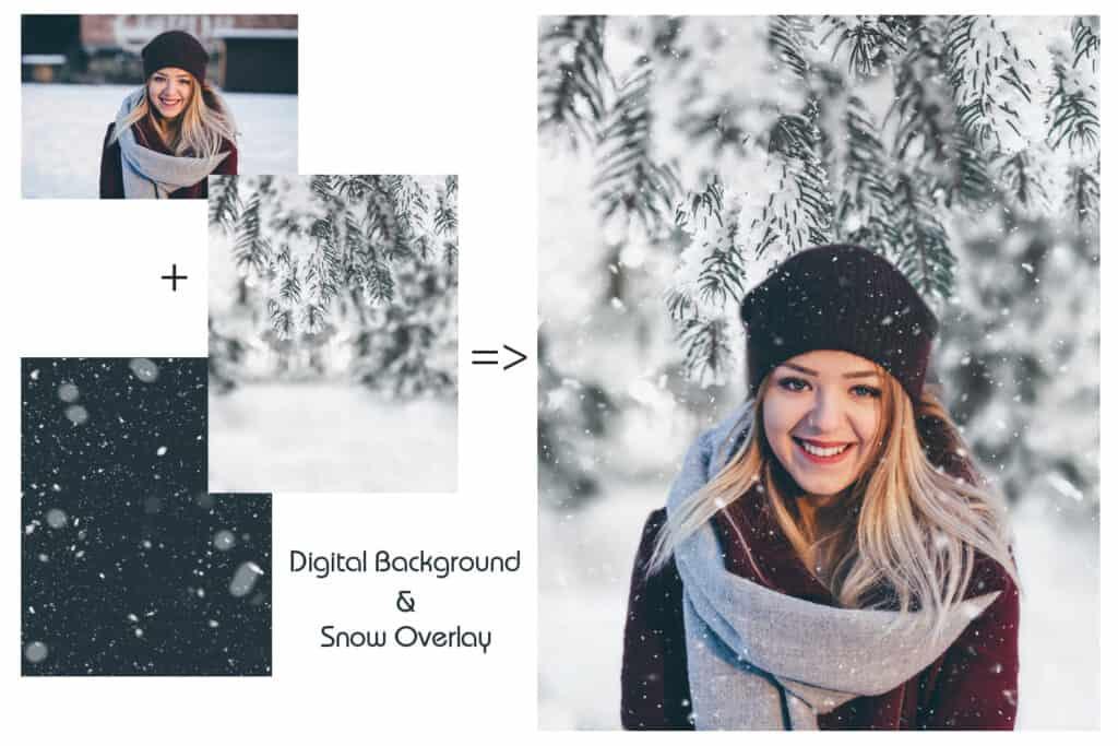 prv1 2 1024x683 - Winter Background