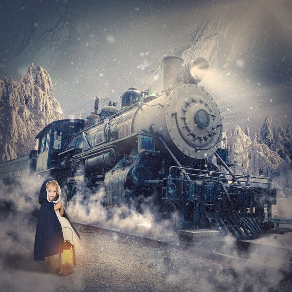 prv1 3 600x600 - Polar Express Digital Background