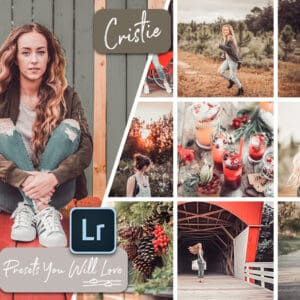 Winter Lightroom Mobile and Desktop Presets