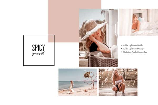 Spicy Lightroom Desktop and Mobile Presets