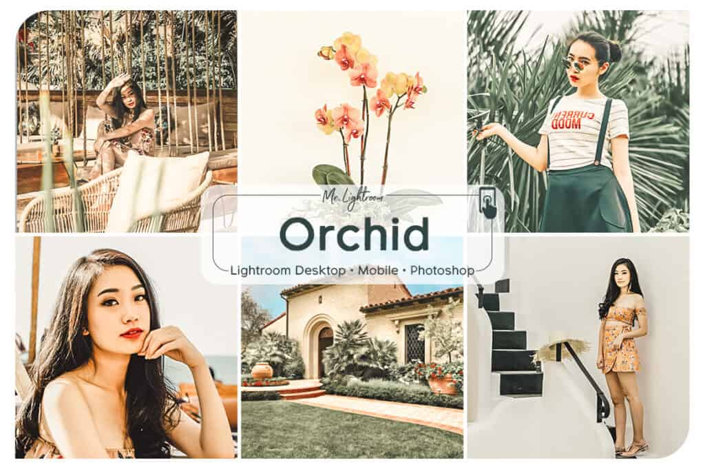 Orchid 1 1024x681 - Orchid Lightroom Desktop and Mobile Presets