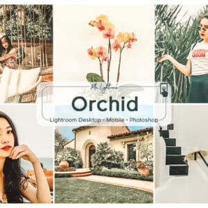 Orchid Lightroom Desktop and Mobile Presets