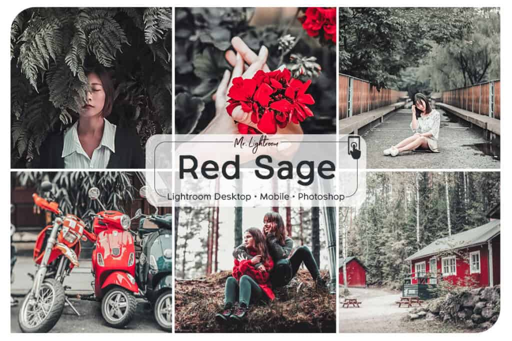 Red Sage 1 1024x681 - Red Sage Lightroom Desktop and Mobile Preset