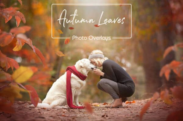 prv1 2 600x399 - Autumn Leaves Overlays