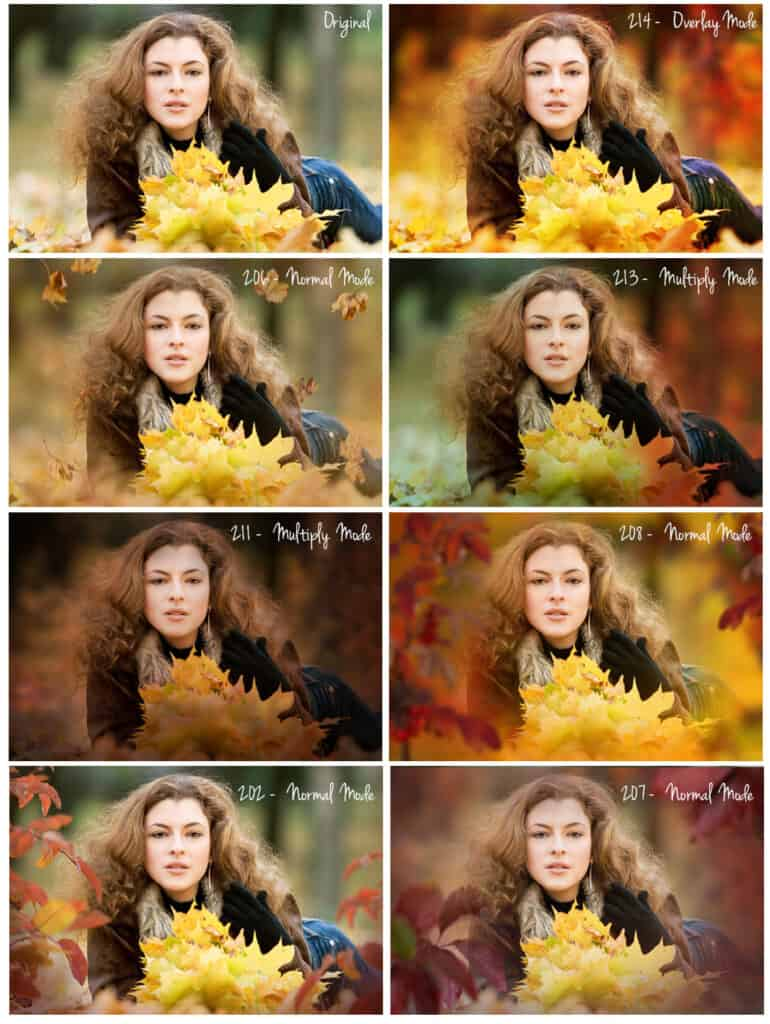 prv10 770x1024 - Autumn Leaves Overlays