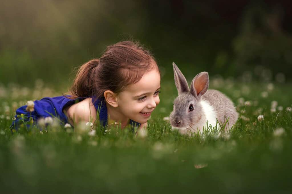 prv3 1024x681 - Spring Bunnies - Easter overlays