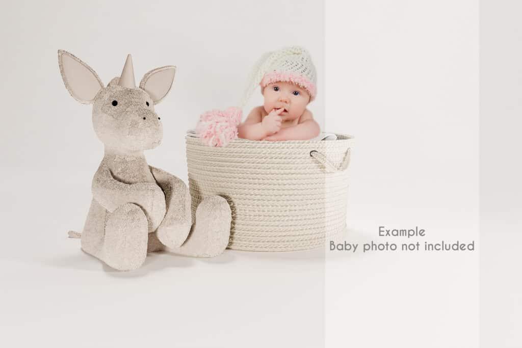 prv2 1024x683 - Hamper and unicorn mockup. Digital Backdrop
