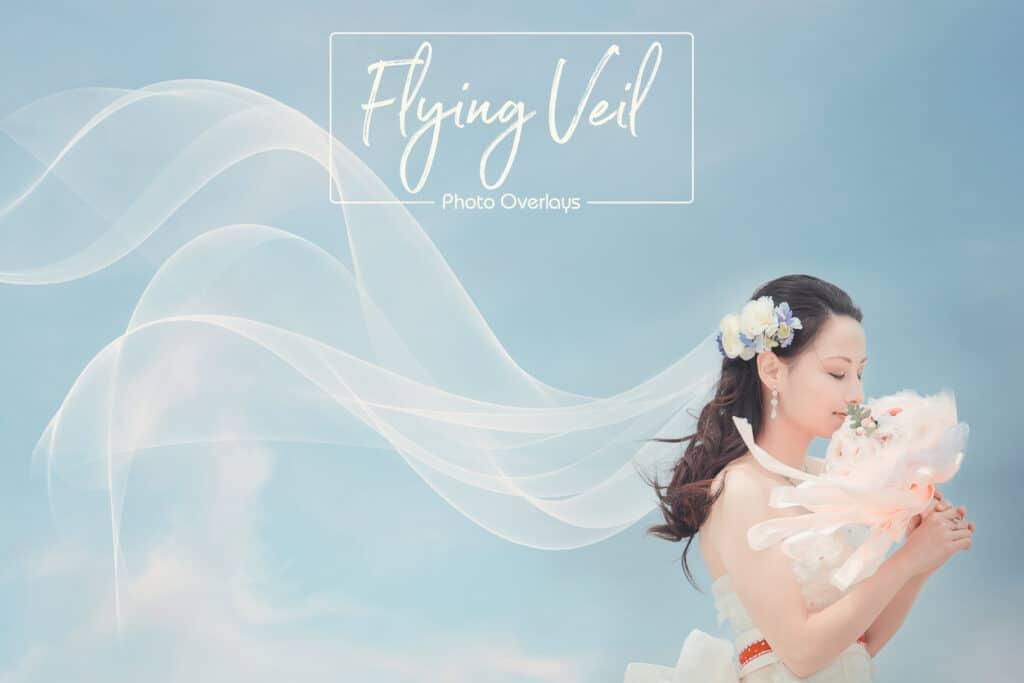 ptv 01 1024x683 - Flying Veil Overlays