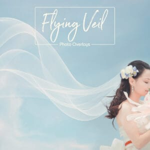 ptv 01 300x300 - Flying Veil Overlays