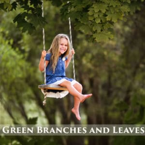 prv1 300x300 - Green Branches and Leaves Overlays