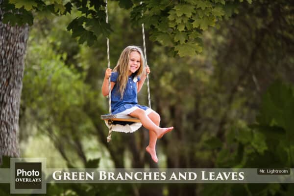 Green Branches and Leaves Overlays