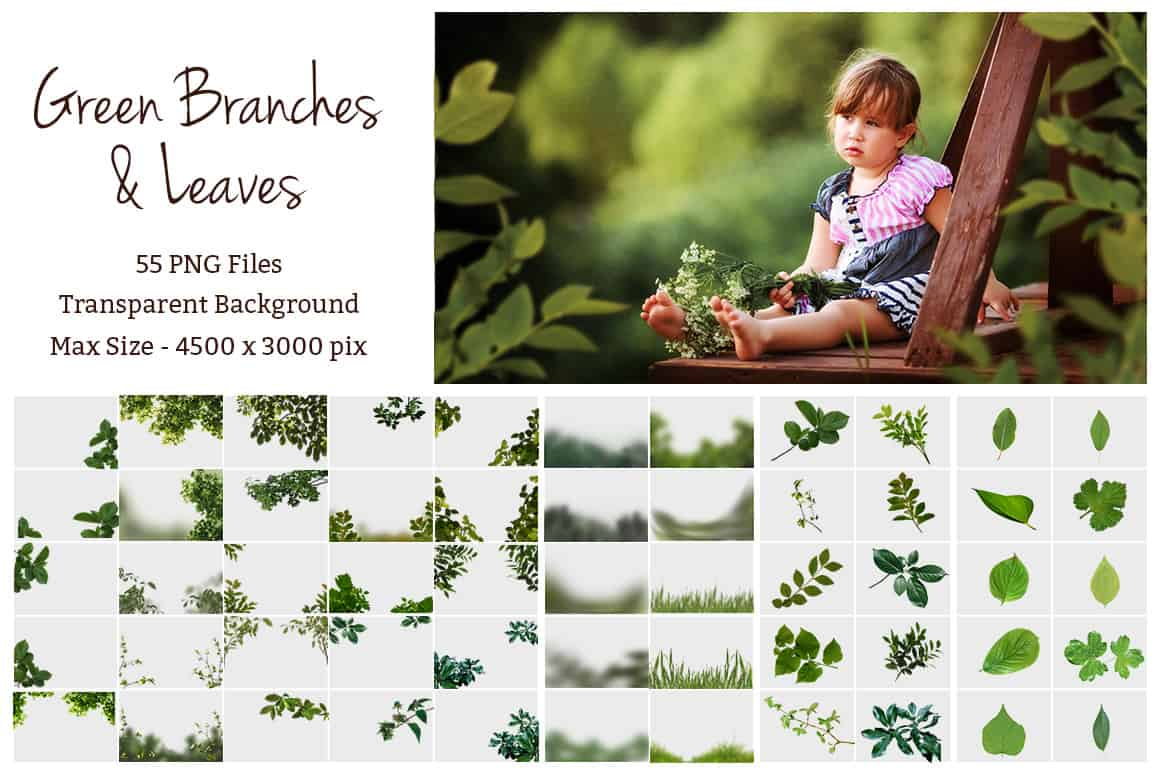 prv2 - Green Branches and Leaves Overlays
