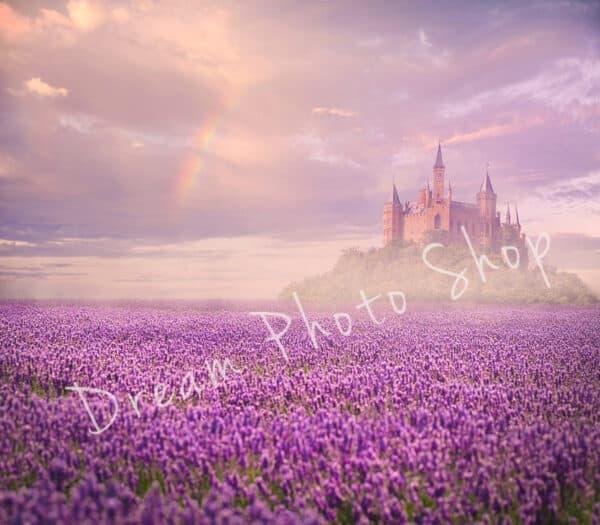 Lavender Field, Digital Background