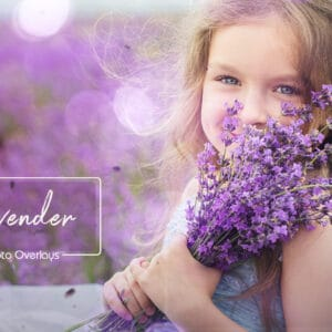 Lavender Photoshop Overlays