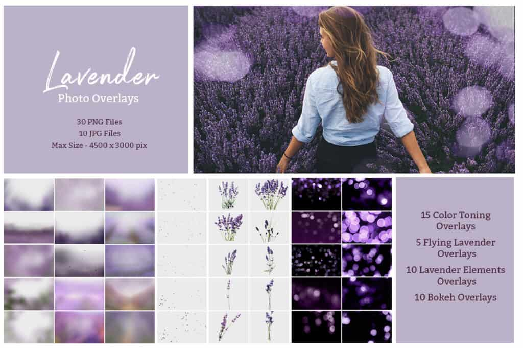 prv2 2 1024x681 - Lavender Photoshop Overlays