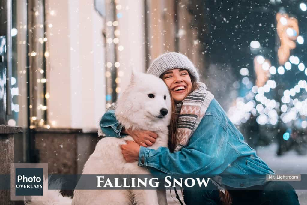 Falling Snow prv 1 1024x683 - Falling Snow Photo Overlays