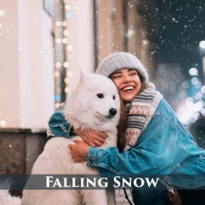 Falling Snow prv 1 300x300 - Falling Snow Photo Overlays
