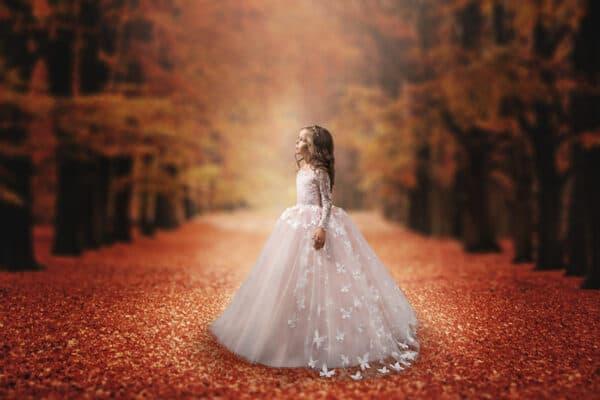 4 Fall Digital Backgrounds