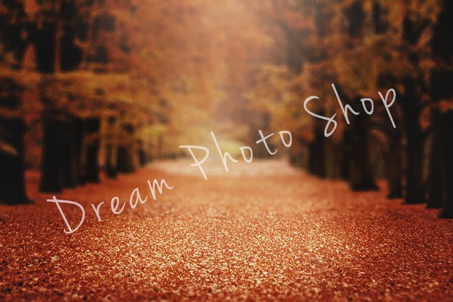 prv2 - 4 Fall Digital Backgrounds
