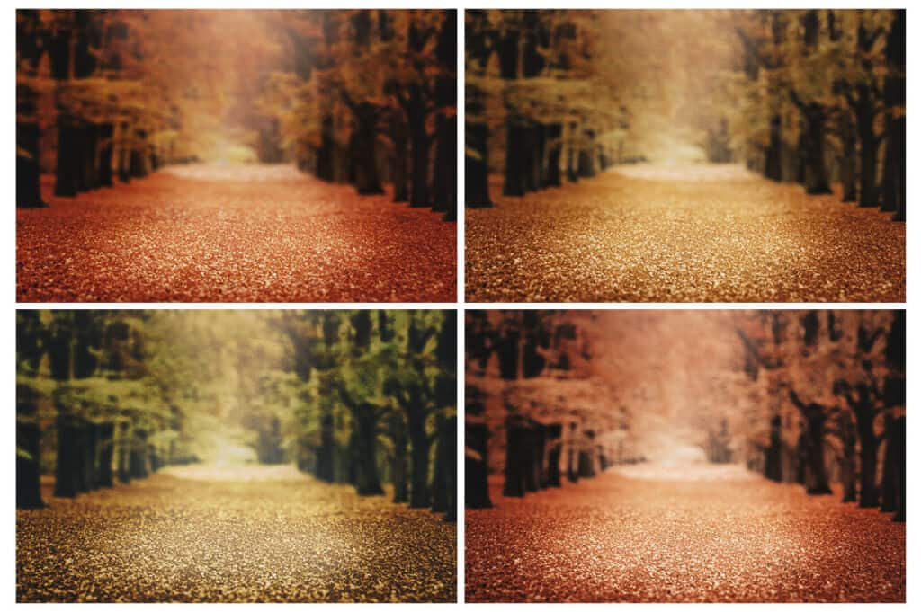 prv3 1024x681 - 4 Fall Digital Backgrounds