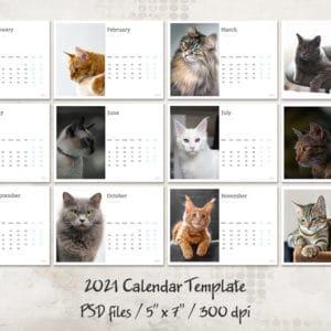prv 1 300x300 - FREE Calendar Template 2021