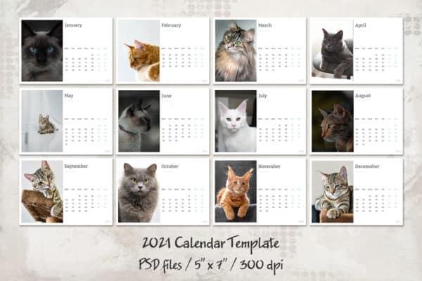 FREE Calendar Template 2021
