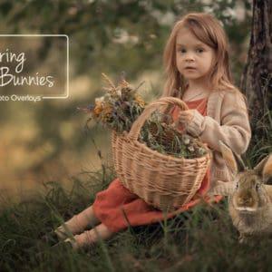 Spring Bunnies - Easter overlays